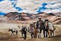Koňská karavana - v době kdy ještě nebyli auta byli koňské karavany jediným způsobem jak dopravit zboží do Malého Tibetu